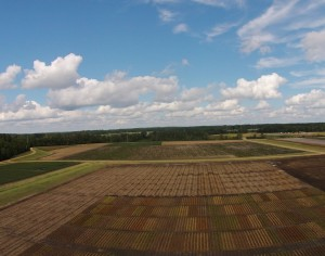 UAS in Agriculture