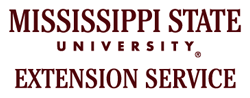 msstate-ext