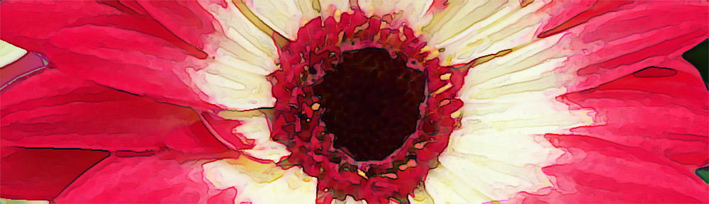 Water color of Gerber Daisy close up.
